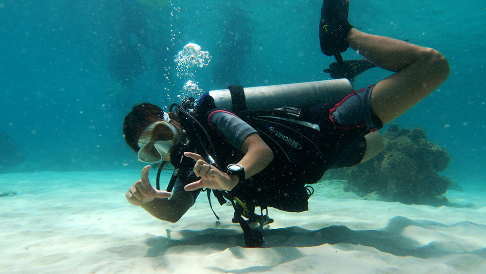 video course Underwater Videography Course Underwater Photography Underwater Videography Underwater Photographer Underwater Videographer Underwater Photo Underwater Production Passion Sea Ocean Water El Nido Palawan Philippines Marine Life Corals Reefs Scuba Diving