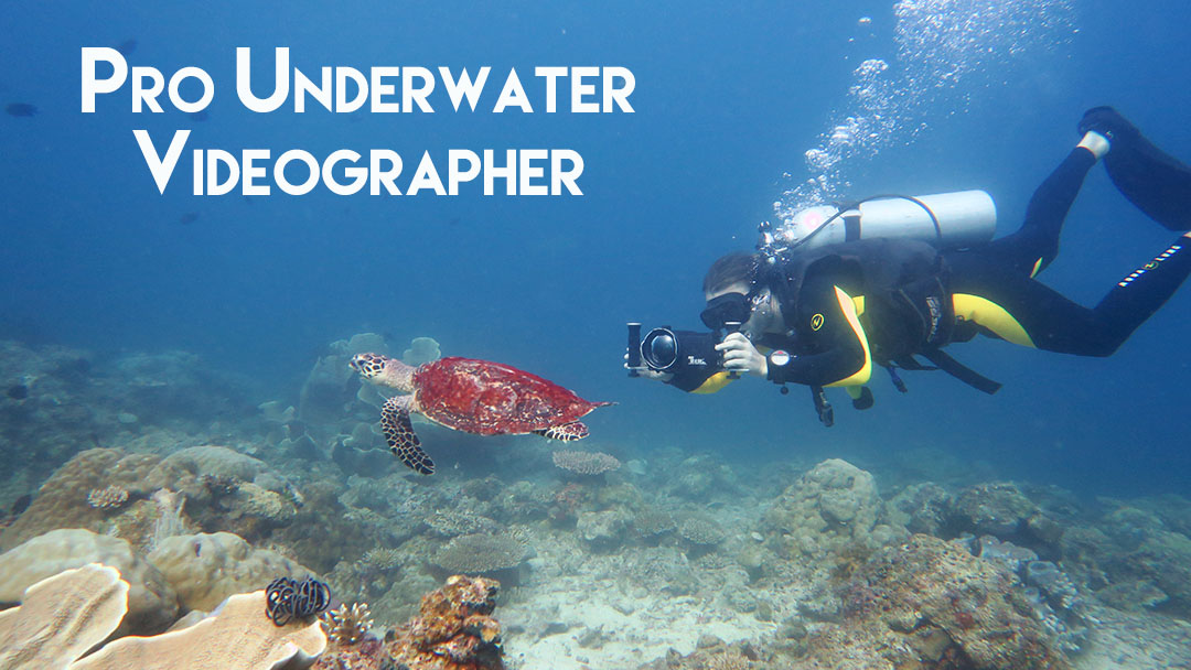 pro underwater videographer