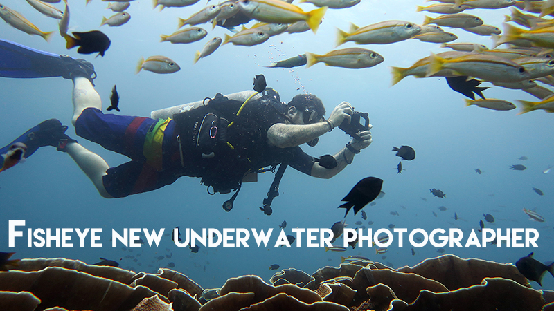 Jamie, Fisheye new underwater photographer