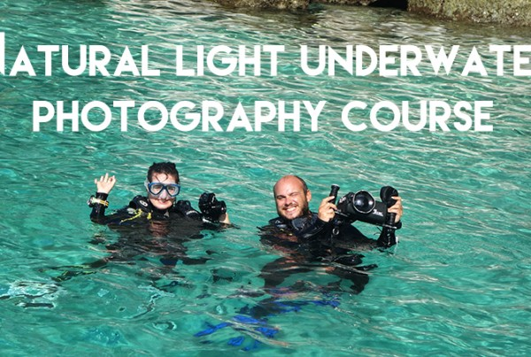 underwater photography course Diving Underwater Water Sea Ocean Underwater Photography Underwater Videography Underwater Photo Marine Life Turtle Fish Corals Reef El Nido Palawan Philippines Adventure Travel Leisure Discover Scuba Diving Underwater Videographer Underwater Photographer Underwater Videography Course Underwater Production