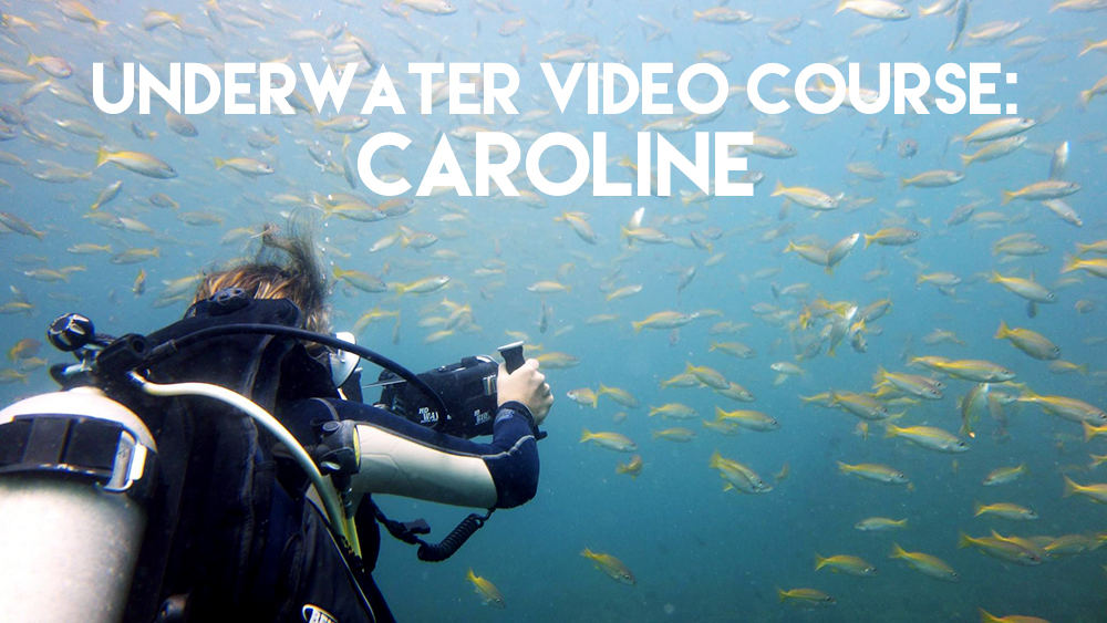 Underwater video course : Caroline