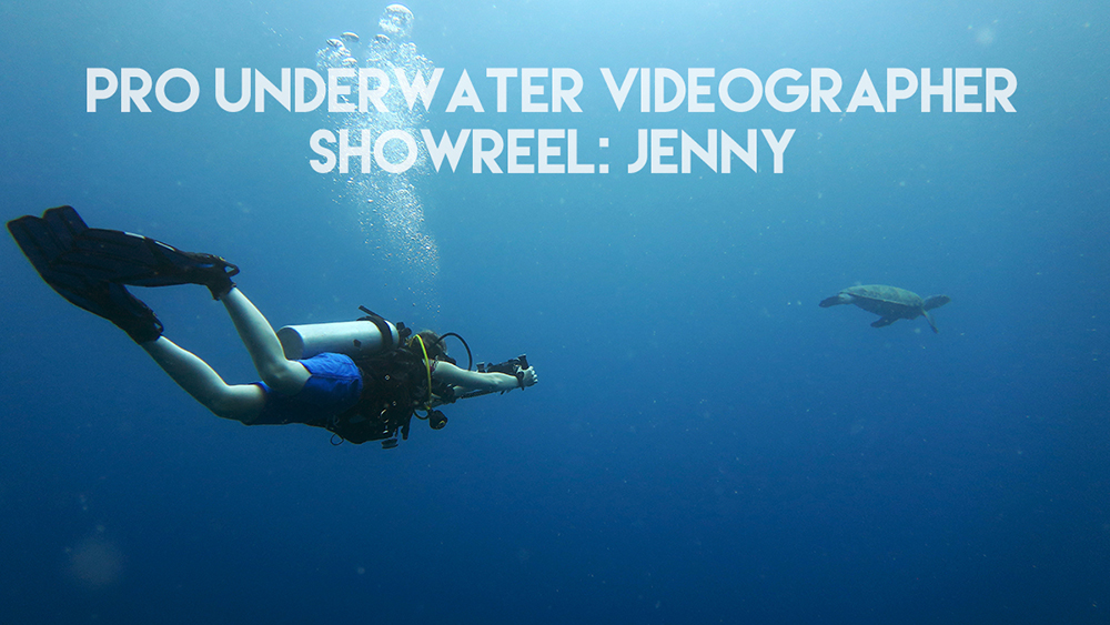 Pro Underwater videographer course: Showreel