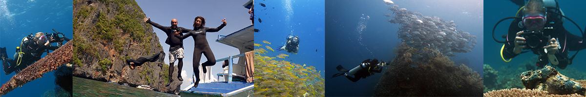 School of Fish Underwater Photography Underwater Videography Course Stonefish Fish Corals Divers Ocean Sea El Nido Palawan Philippines Explore El Nido Palawan Scuba Diving