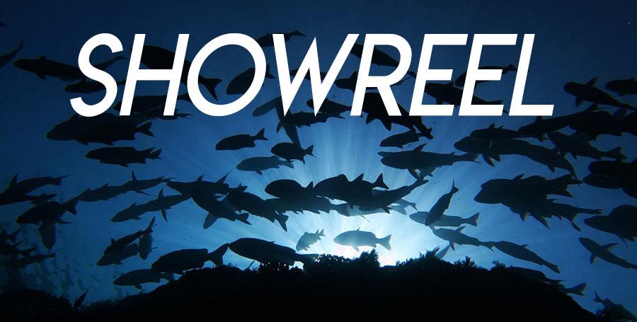 Showreel Underwater Videography Course Underwater Photography Course Fish Marine Life Diver Happy Diving EL Nido Philippines El Nido Palawan Showreel Underwater Photographer Natgeo